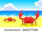 crab on the sea