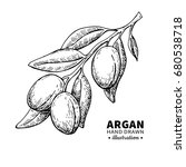 argan vector drawing. isolated... | Shutterstock .eps vector #680538718