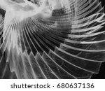 grayscale fractal background... | Shutterstock . vector #680637136