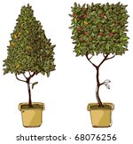 decorative trees | Shutterstock .eps vector #68076256