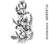vintage vector floral...   Shutterstock .eps vector #680858716