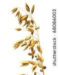 oats  clipping path  | Shutterstock . vector #68086003