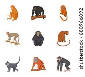 species of chimpanzee icons set.... | Shutterstock .eps vector #680966092