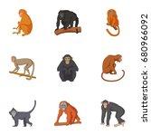 Species Of Chimpanzee Icons Se...
