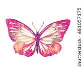 beautiful pink butterfly... | Shutterstock . vector #681057175