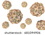 feline panleukopenia virus ... | Shutterstock . vector #681094906