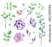 set of floral design watercolor ... | Shutterstock . vector #681185356