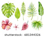 group of individual elements ... | Shutterstock . vector #681344326