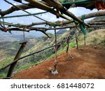Small photo of Wooden structure