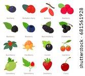 Berries Icons Set. Cartoon...