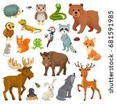 set of forest animals  birds in ...   Shutterstock .eps vector #681591985