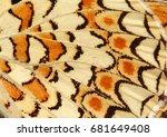 butterfly pattern | Shutterstock . vector #681649408