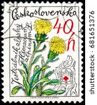 Small photo of UKRAINE - CIRCA 2017: A stamp printed in Czechoslovakia shows Alpine Hawkweed Hieracium alpinum, from series Nature Protection, circa 1979
