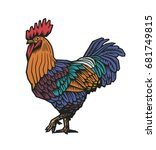 colorful rooster or cock hand... | Shutterstock .eps vector #681749815
