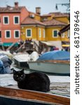 Stock photo black cat lying on a boat in murano italy 681789646