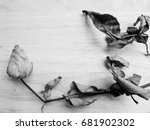 black rose  heartbroken. | Shutterstock . vector #681902302