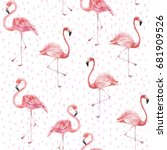 flamingo on the white... | Shutterstock . vector #681909526
