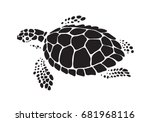 graphic sea turtle, vector
