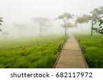 a walk way in siam tulip field... | Shutterstock . vector #682117972