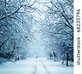 winter landscape with snow | Shutterstock . vector #68235796