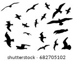 set of flying seagulls from... | Shutterstock .eps vector #682705102
