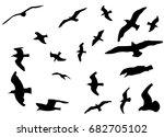 set of flying seagulls from... | Shutterstock .eps vector #682705102