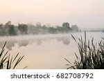 Fog On The Lake With The Reed...