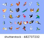 birds collection isolated with... | Shutterstock .eps vector #682737232