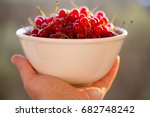 woman hand holding bowl red... | Shutterstock . vector #682748242