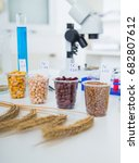 chemical laboratory of the food ... | Shutterstock . vector #682807612