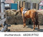 a horse with a saddle stands... | Shutterstock . vector #682819702