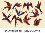 vector illustration of swallow... | Shutterstock .eps vector #682906945