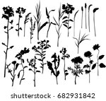 collection of vector... | Shutterstock .eps vector #682931842