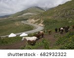 Small photo of Kyrgyzstan. Horses are grazed on a mountain pasture in the valley Suusamyr.Settlement of cattle breeders. Yurtas in which there live cattle breeders.