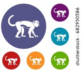 macaque icons set in flat... | Shutterstock .eps vector #682950586