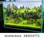 Close Up Image Of  Aquarium...