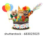 Stock photo funny cats with happy birthday cake they are wearing a party hat isolated on white background 683025025
