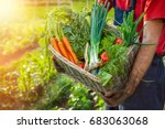 farmer holding wicker basket... | Shutterstock . vector #683063068