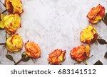yellow roses on white shabby... | Shutterstock . vector #683141512