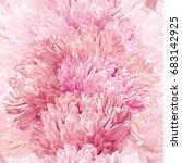 modern floral art   pink asters ... | Shutterstock .eps vector #683142925