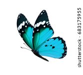 Stock photo beautiful blue monarch butterfly isolated on white background 683175955