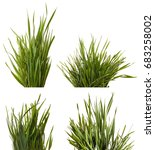 a bunch of green grass.... | Shutterstock . vector #683258002