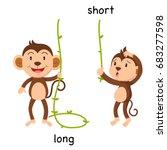 opposite long and short vector... | Shutterstock .eps vector #683277598
