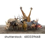 Group Of Africa Animals...