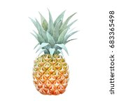 watercolor pineapple drawing ... | Shutterstock . vector #683365498