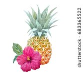 watercolor picture of pineapple ... | Shutterstock . vector #683365522