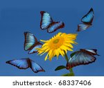 Blue Butterflies Dancing Aroun...