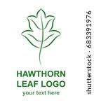 hawthorn leaf linear icon.... | Shutterstock .eps vector #683391976