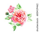 two pink roses with buds.... | Shutterstock . vector #683419462