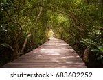 Tree Tunnel  Wooden Bridge In...